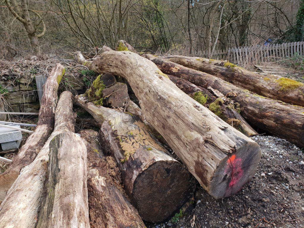 Holz Boni Garten